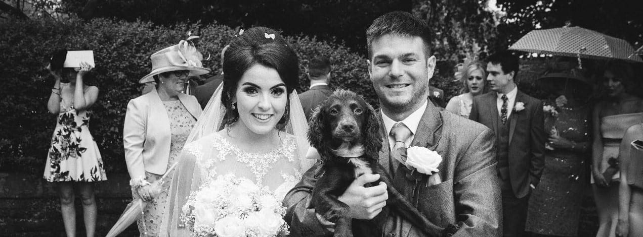 Dog at wedding 2