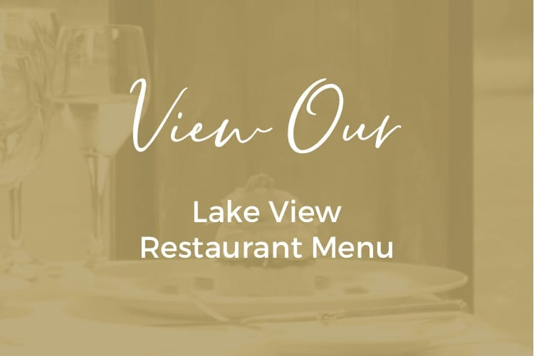 Lake-View-750x500