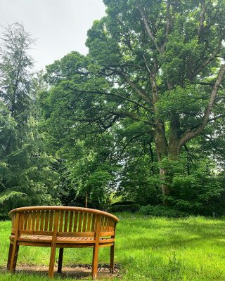 What a beautiful day! ☀️   Whether you are a sun worshiper or prefer chilling in the cool shade, there are plenty of places to sit back and relax in the Armathwaite Hall gardens.  #sun #sunworshipper #coolshade #armathwaitehall #lakedistrict #bankholidayweekend #bankholiday