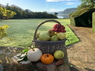 Freshly picked from the apple trees in our incredible gardens!  Happy Apple Day from all of us here at Armathwaite Hall Hotel and Spa! #appleday #armathwaitehallhotel #thespaatarmathwaitehall #lakedistrict #lakedistrictuk